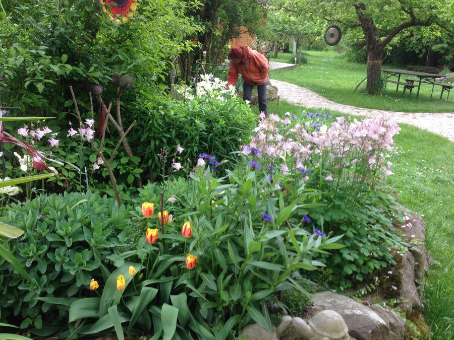 Gartenpflege & Betreuung
